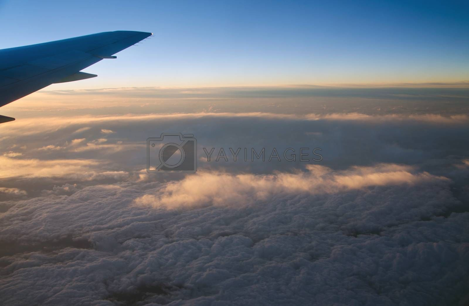 Wing aircraft at sunrise over the cloud