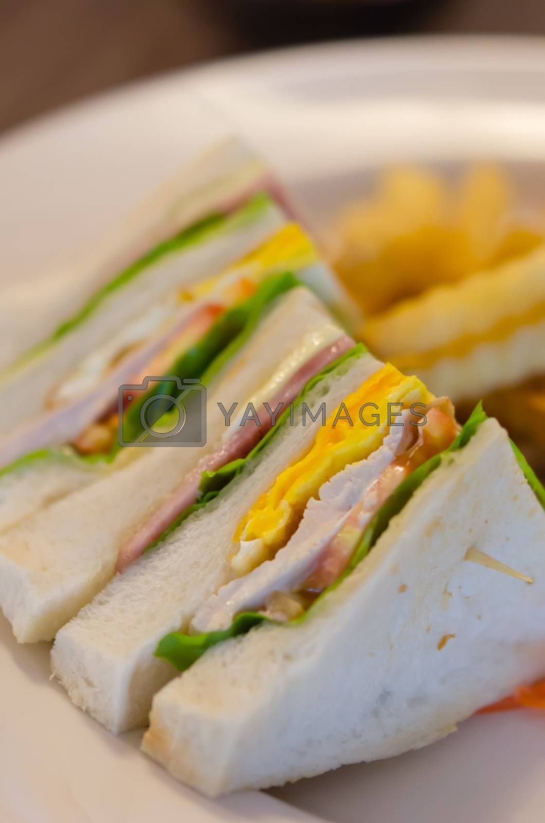 Royalty free image of club sandwich by rakratchada