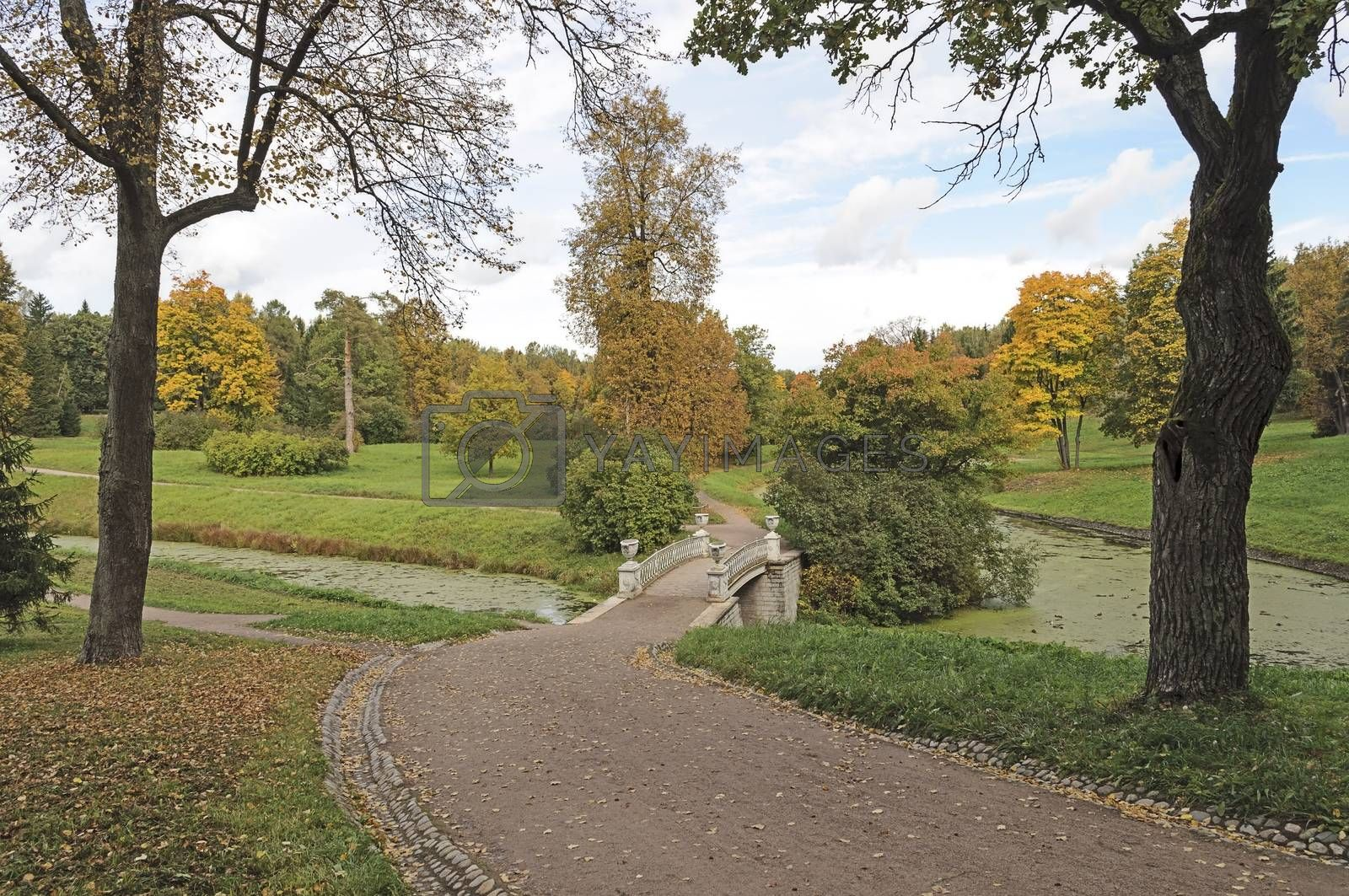 Trail with fallen leaves to the bridge in old Pavlovsk park of St. Petersburg, autumn