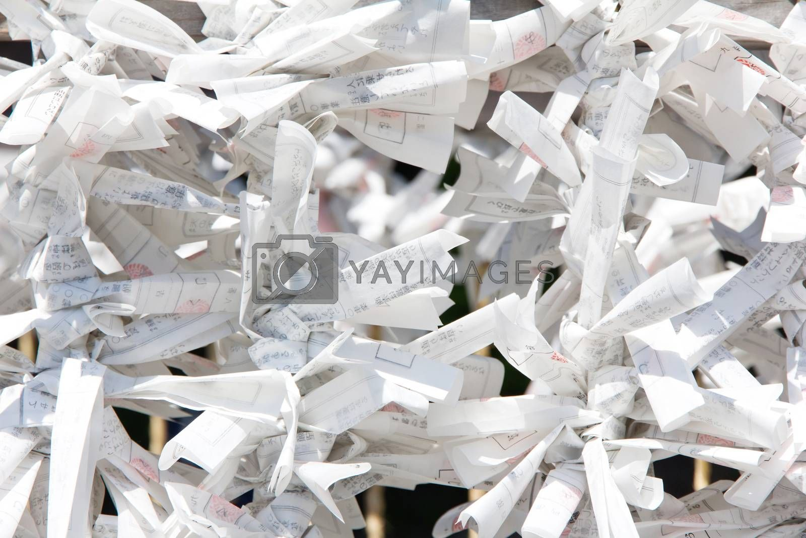 Royalty free image of Tokyo, Japan - omikuji fortune paper hanged on a line in a temple by ponsulak