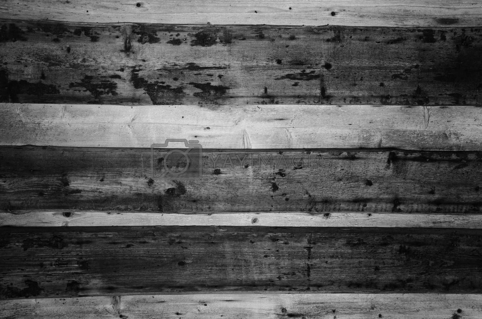 Royalty free image of old wooden wall black and white background by alis_photo