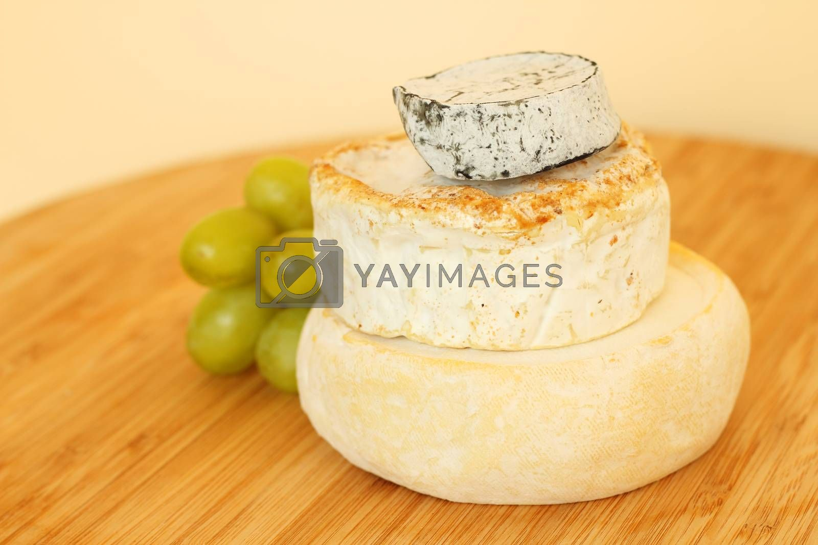 Royalty free image of Stack of camembert cheese by destillat