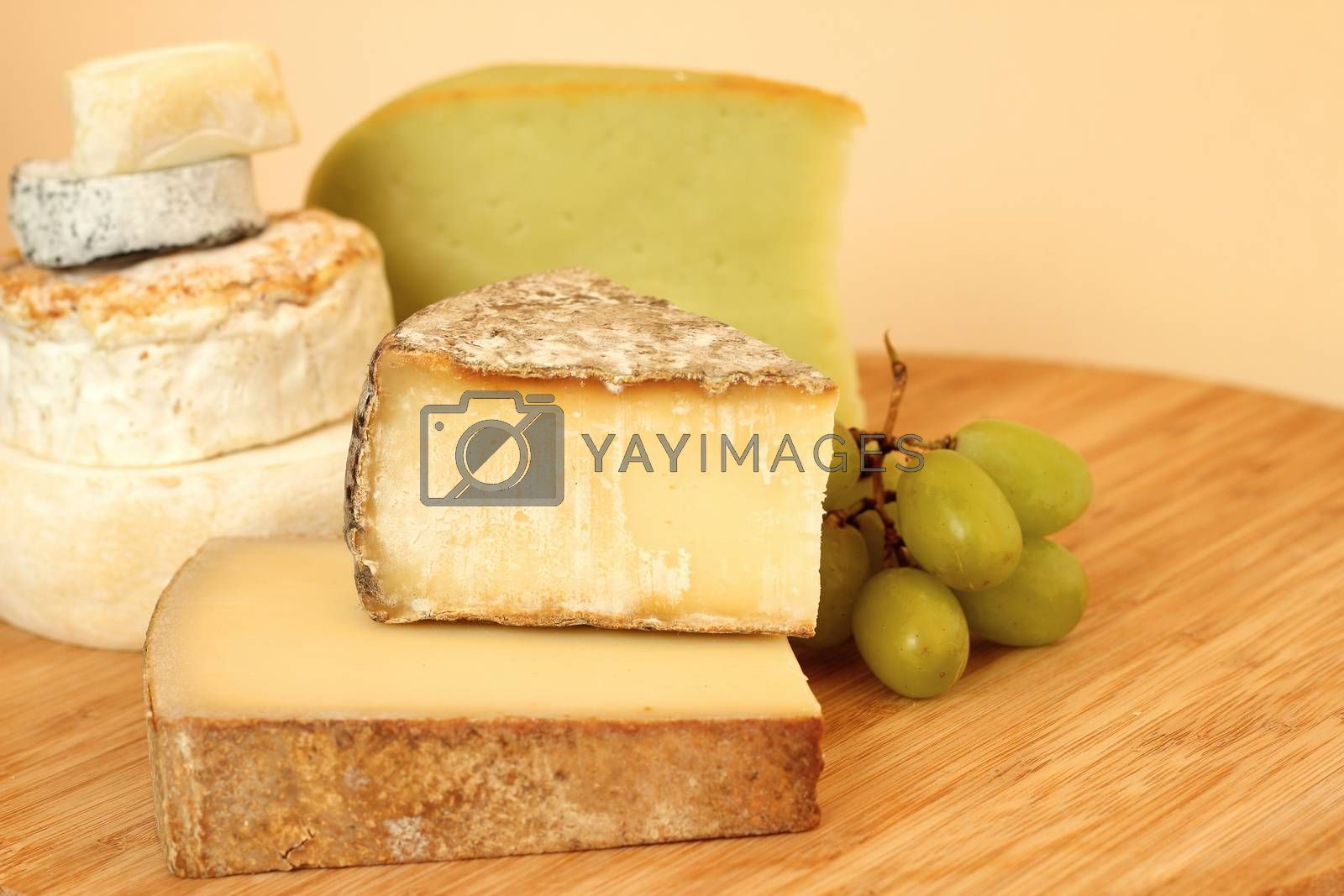 Royalty free image of Various types of cheese by destillat