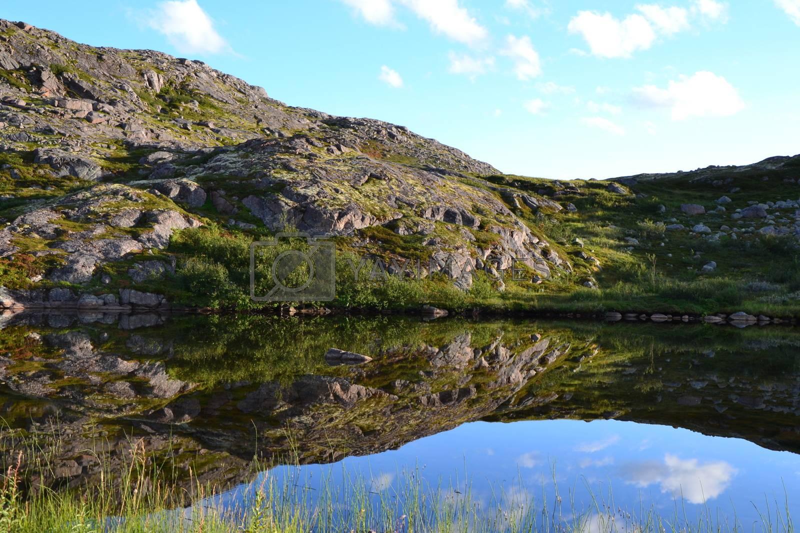 Royalty free image of Lake by ruv86