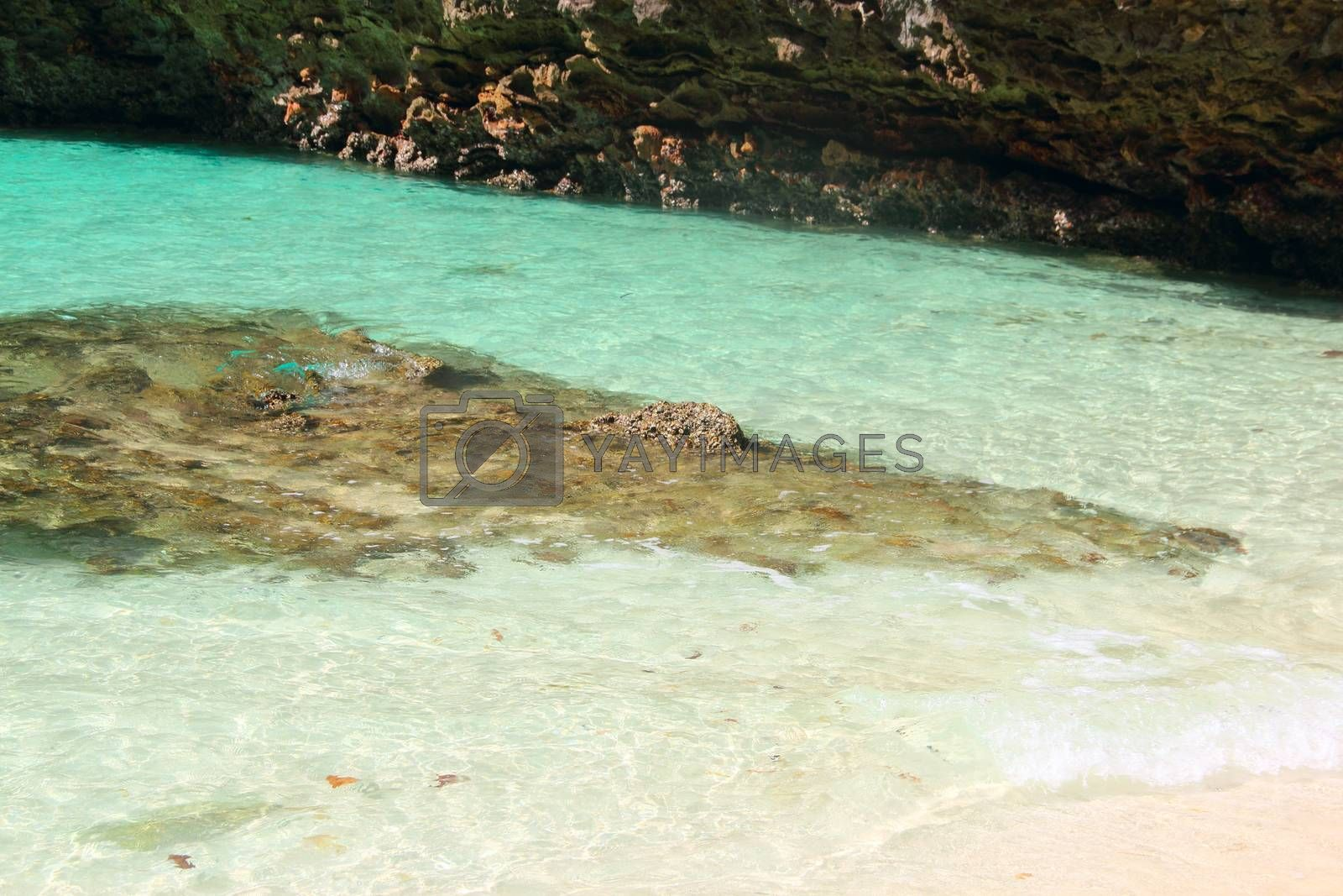 Royalty free image of Tropical beach of Similan islands, Thailand by destillat