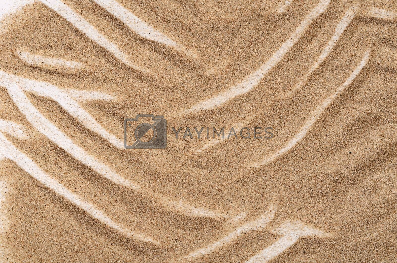 Royalty free image of Sand texture as a background by SvetaVo