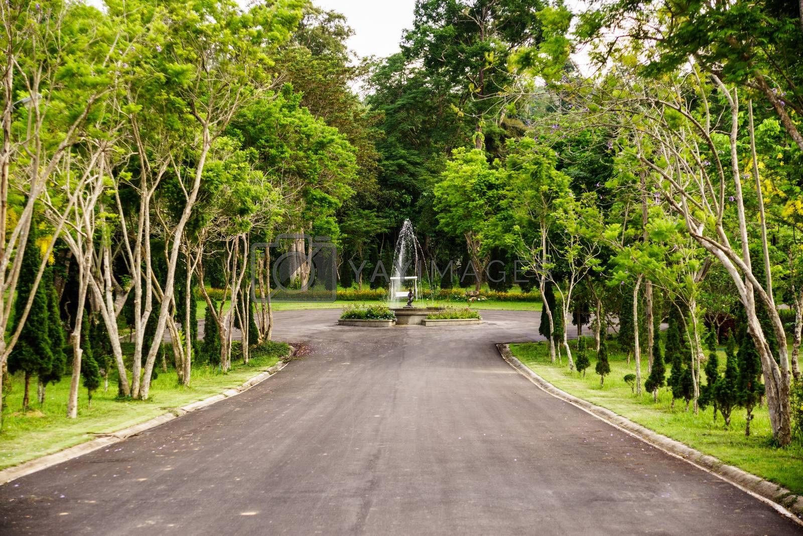 Royalty free image of fountain in the park by nattapatt
