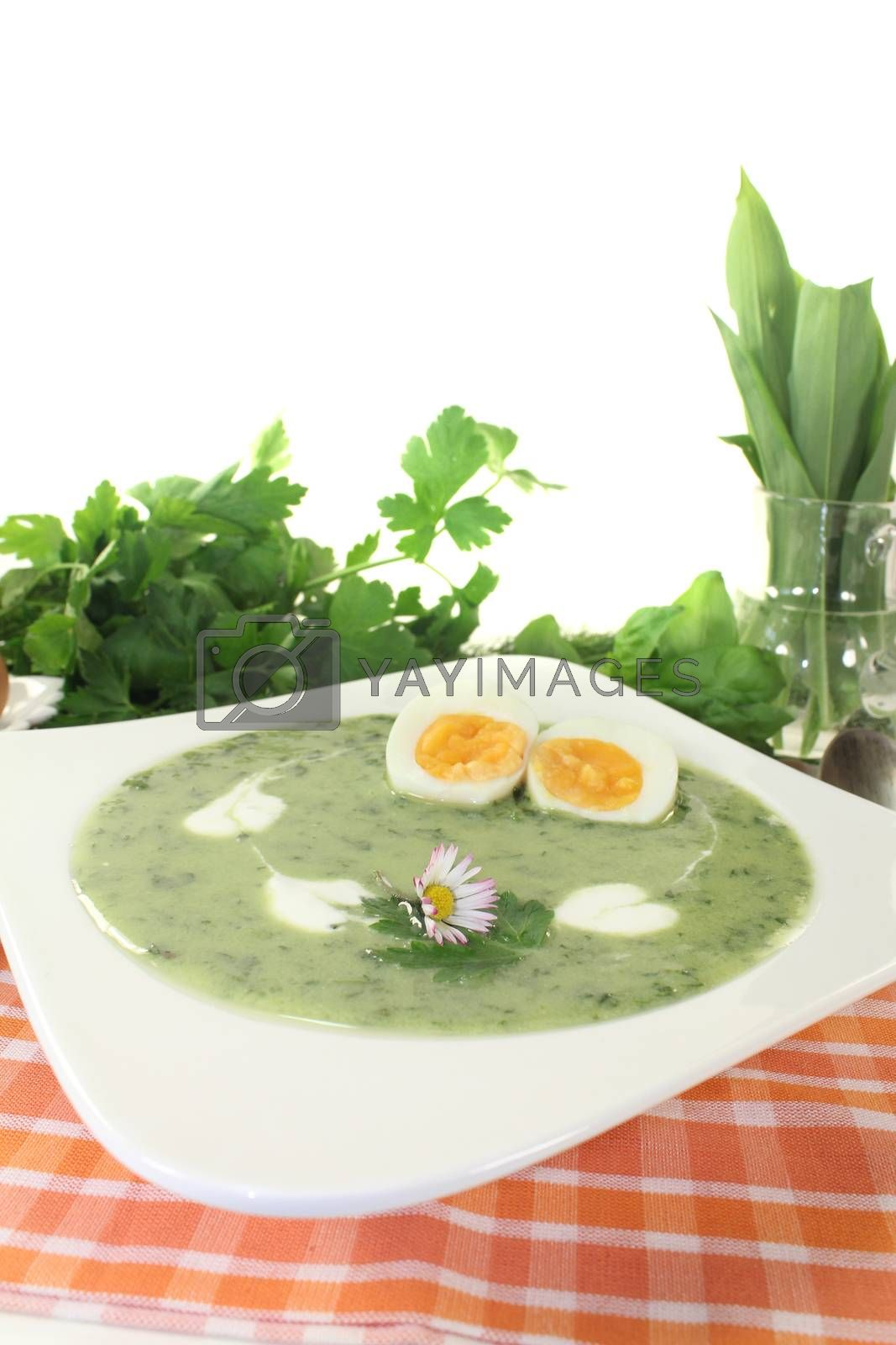 Royalty free image of herbs soup with eggs and a dollop of cream by discovery