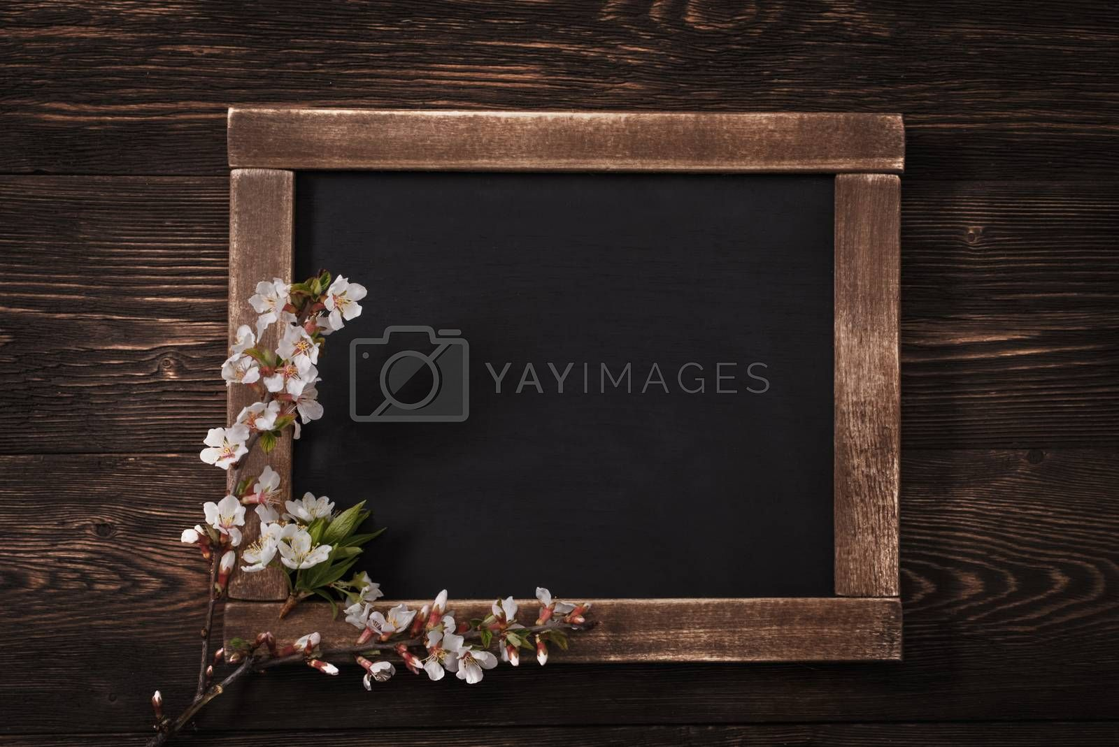Royalty free image of Old vintage school slate with flowers by primopiano
