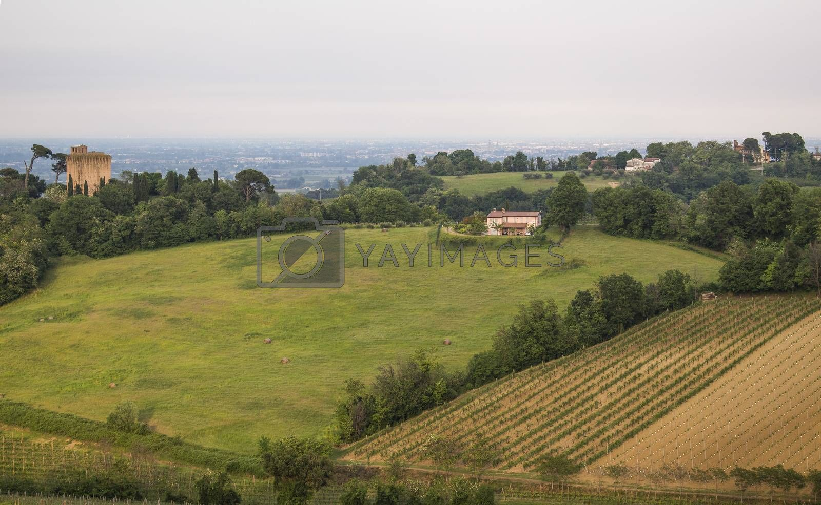View of Emilia Romagna countryside near Faenza in Italy
