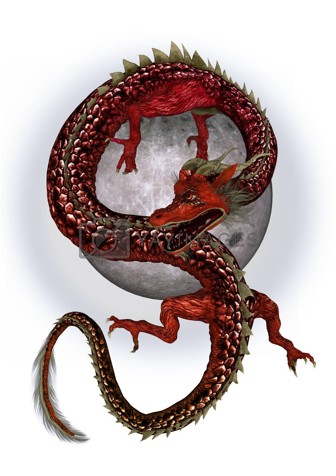 Royalty free image of Red Eastern Dragon by Vac