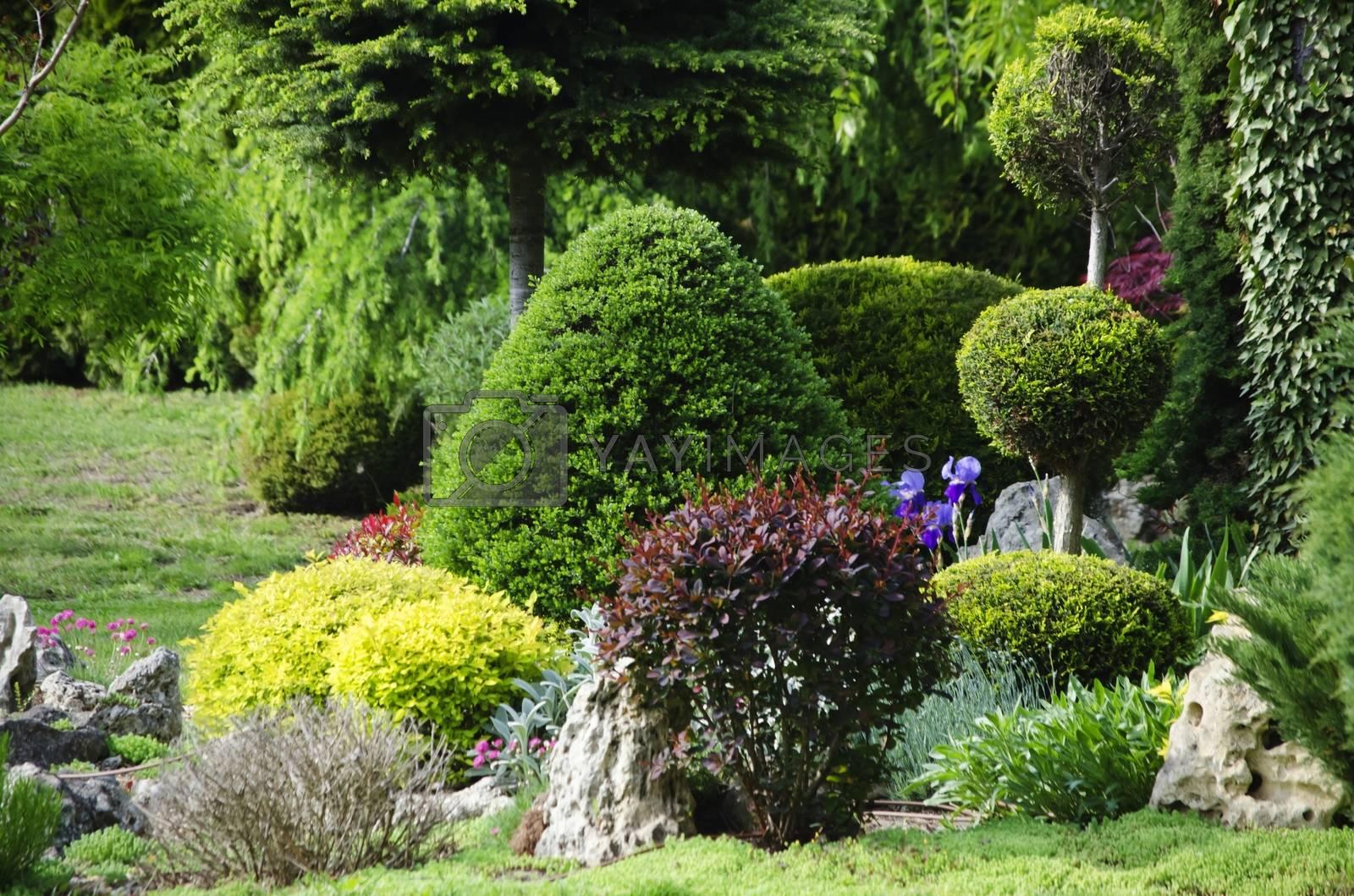 Royalty free image of Gardening and Landscaping by razvodovska