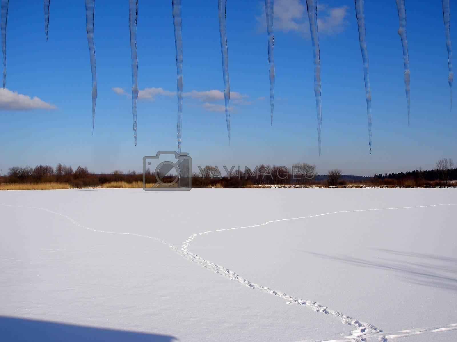 Royalty free image of winter landscape by Irinavk