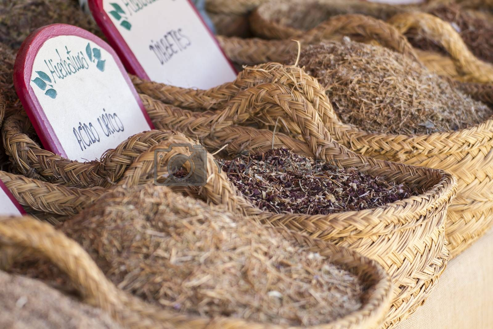 Medical, wicker baskets stuffed medicinal healing herbs