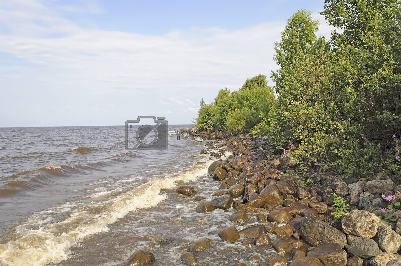 Coast White Lake near Belozersk, North Russia
