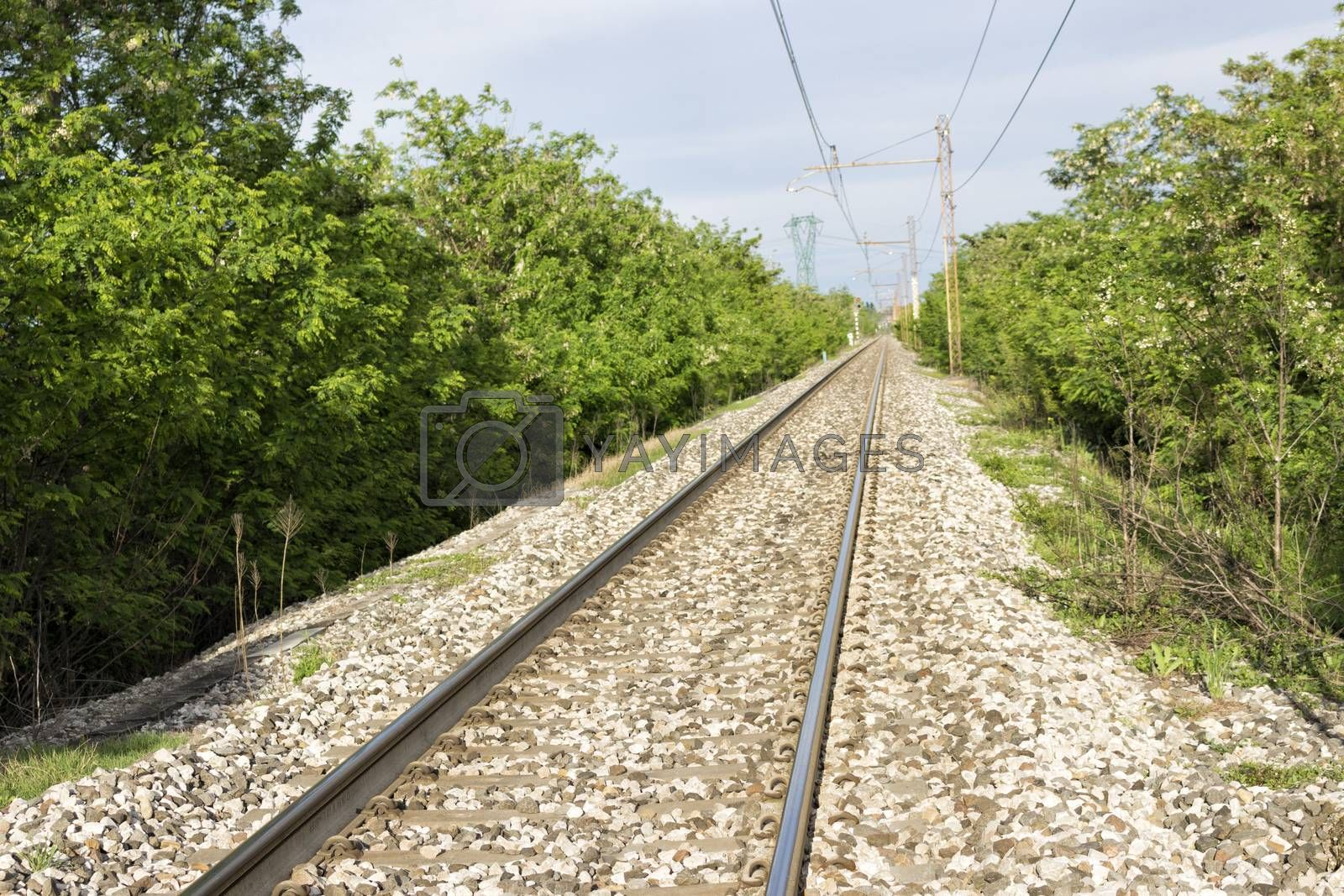 railroad and trees in Italian countryside