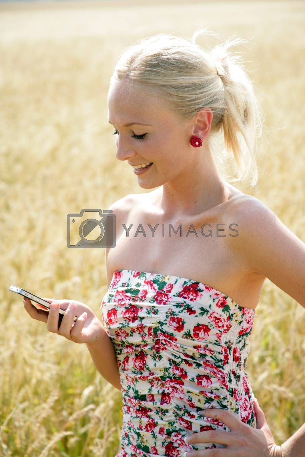 Young attractive woman standing in a wheat field, looking at her cellphone. She looks happy and relaxed.