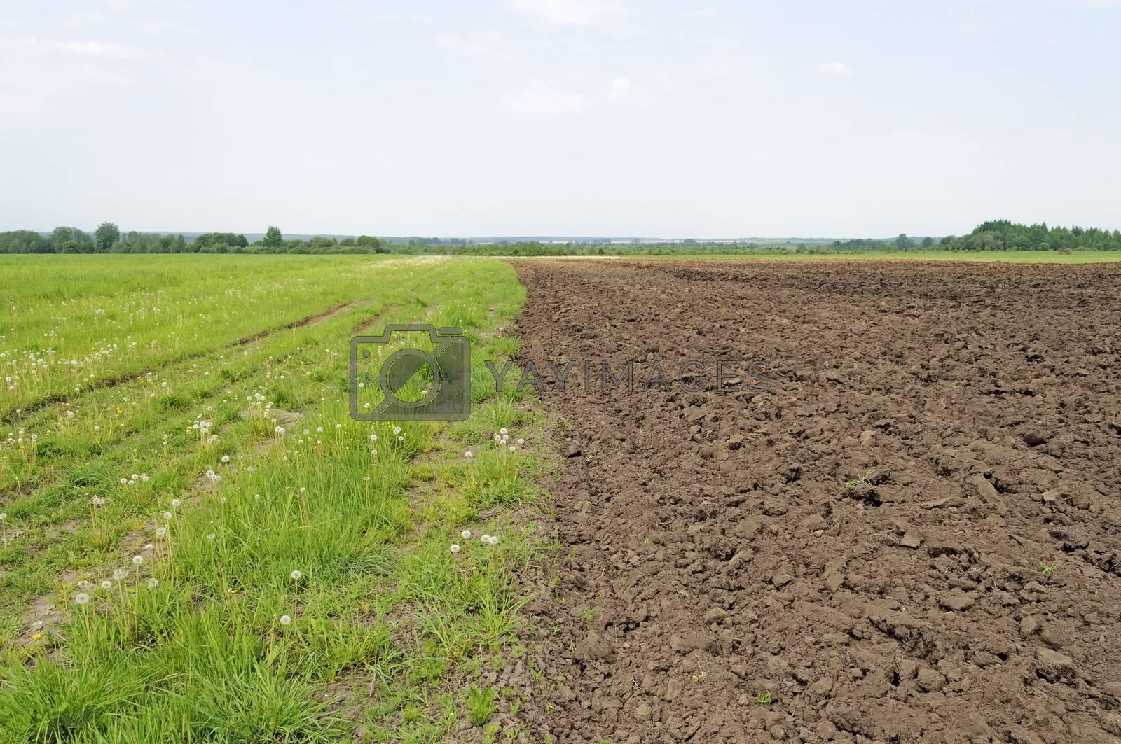Freshly plowed farm field before sowing, spring time