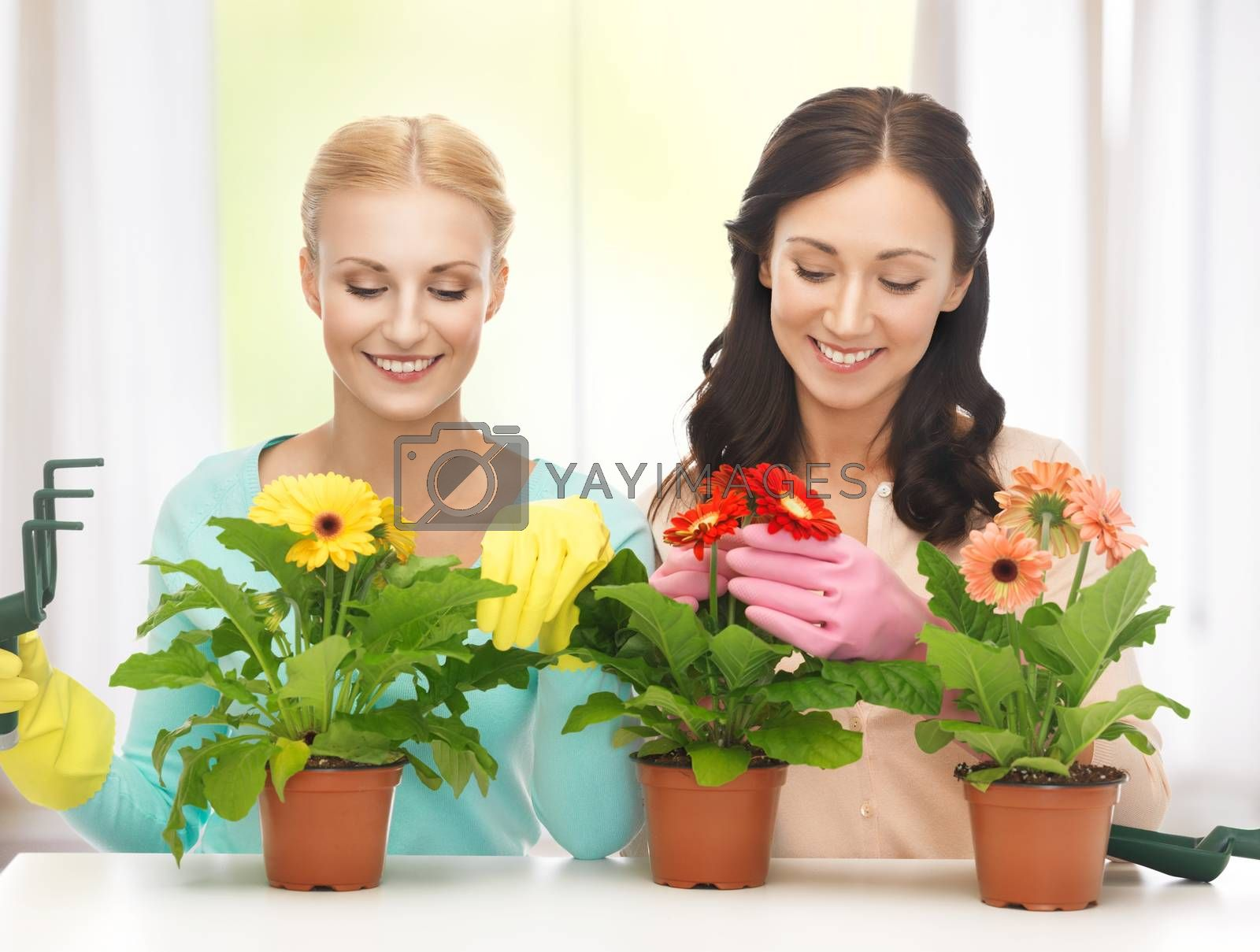 housewife with flower in pot and gardening set by dolgachov