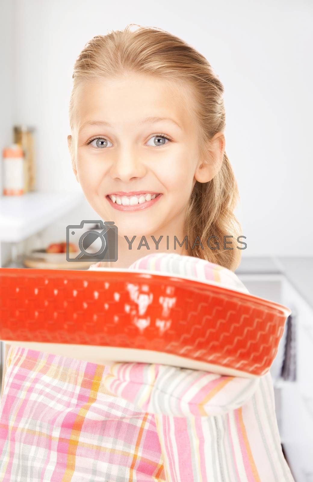 little housewife by dolgachov