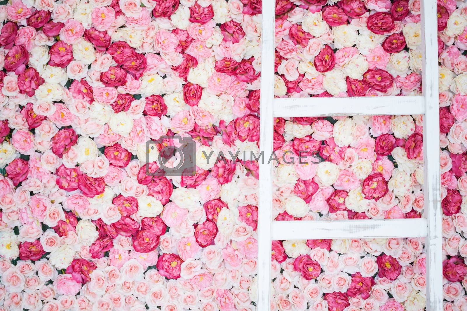 background full of white and pink roses by dolgachov