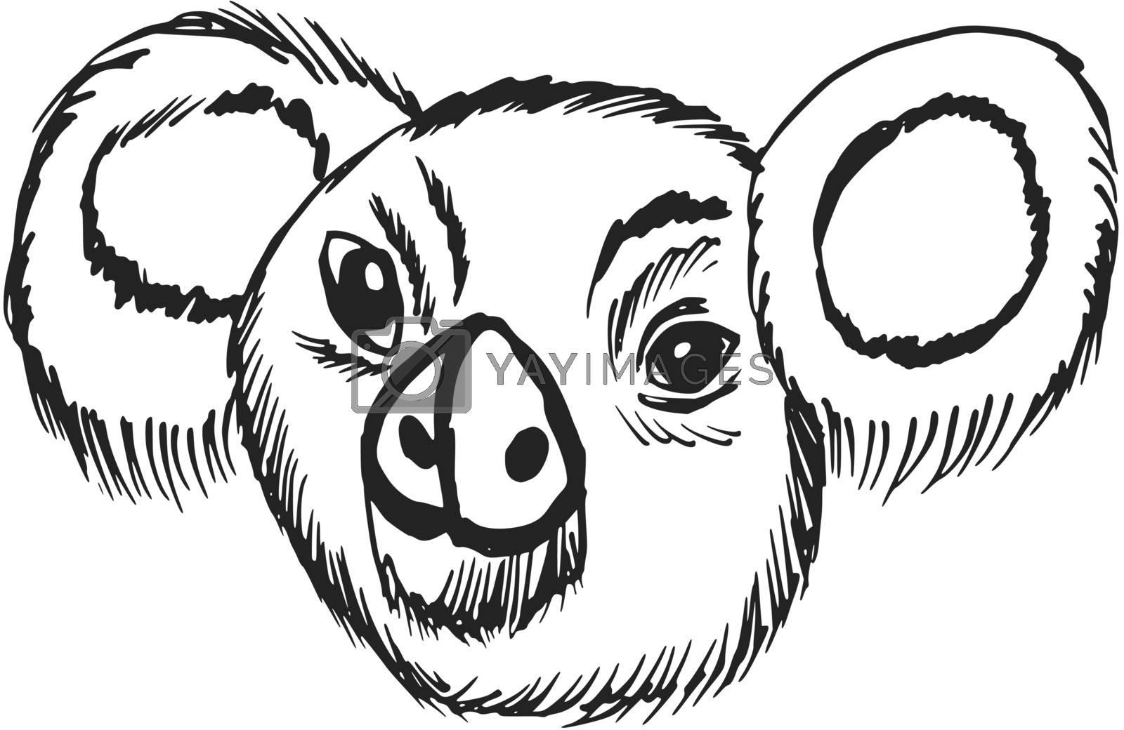 hand drawn, sketch, cartoon illustration of koala
