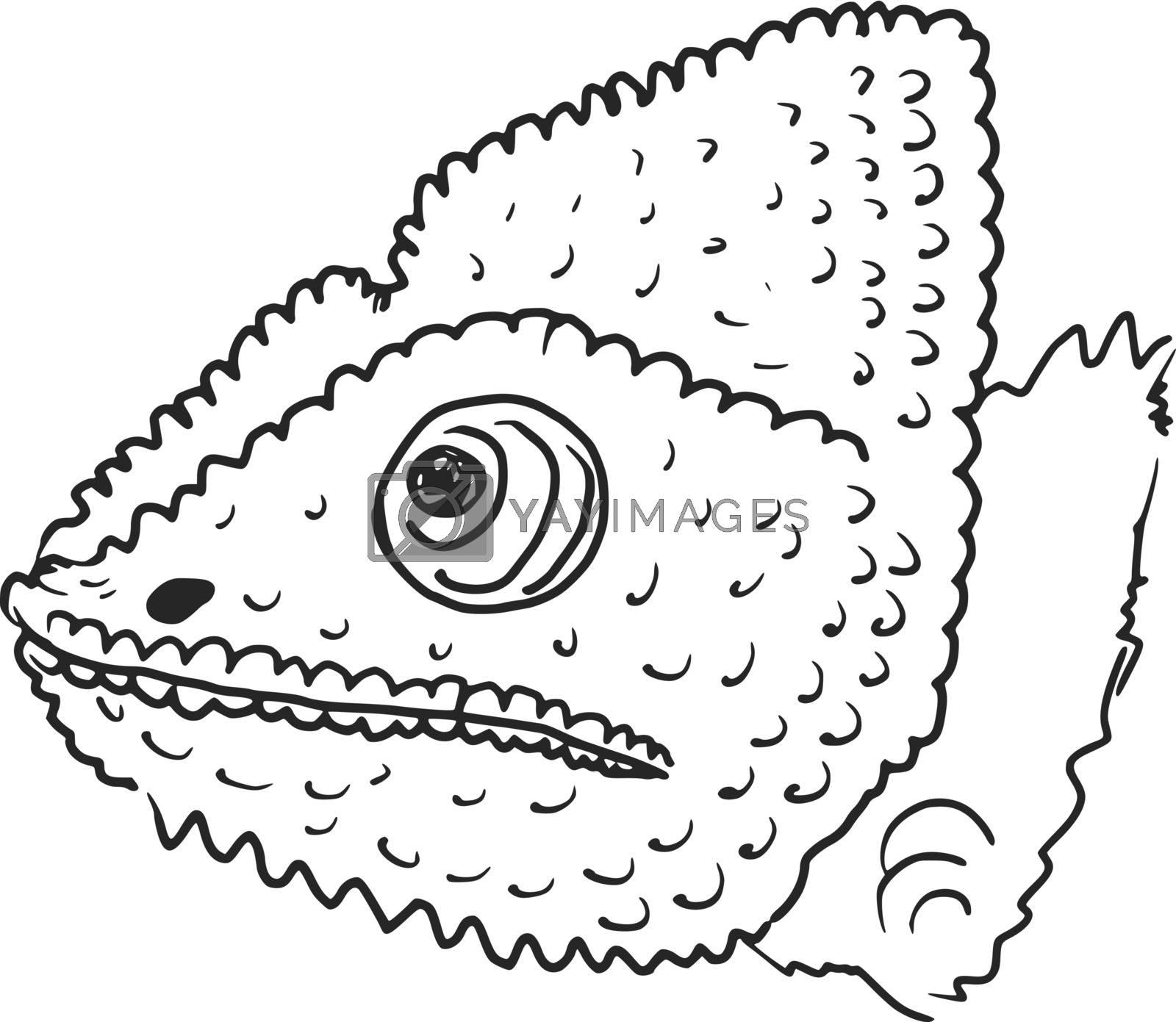 hand drawn, sketch, cartoon illustration of chameleon