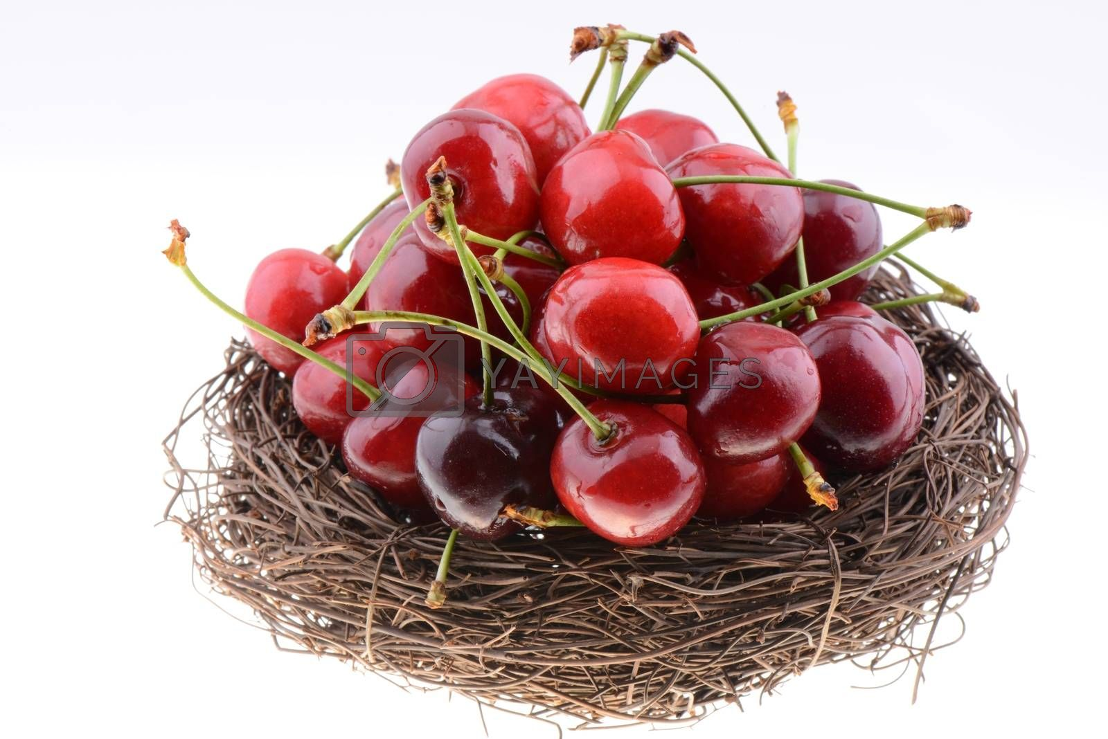 Sweet red cherries in a nest isolated on a white background