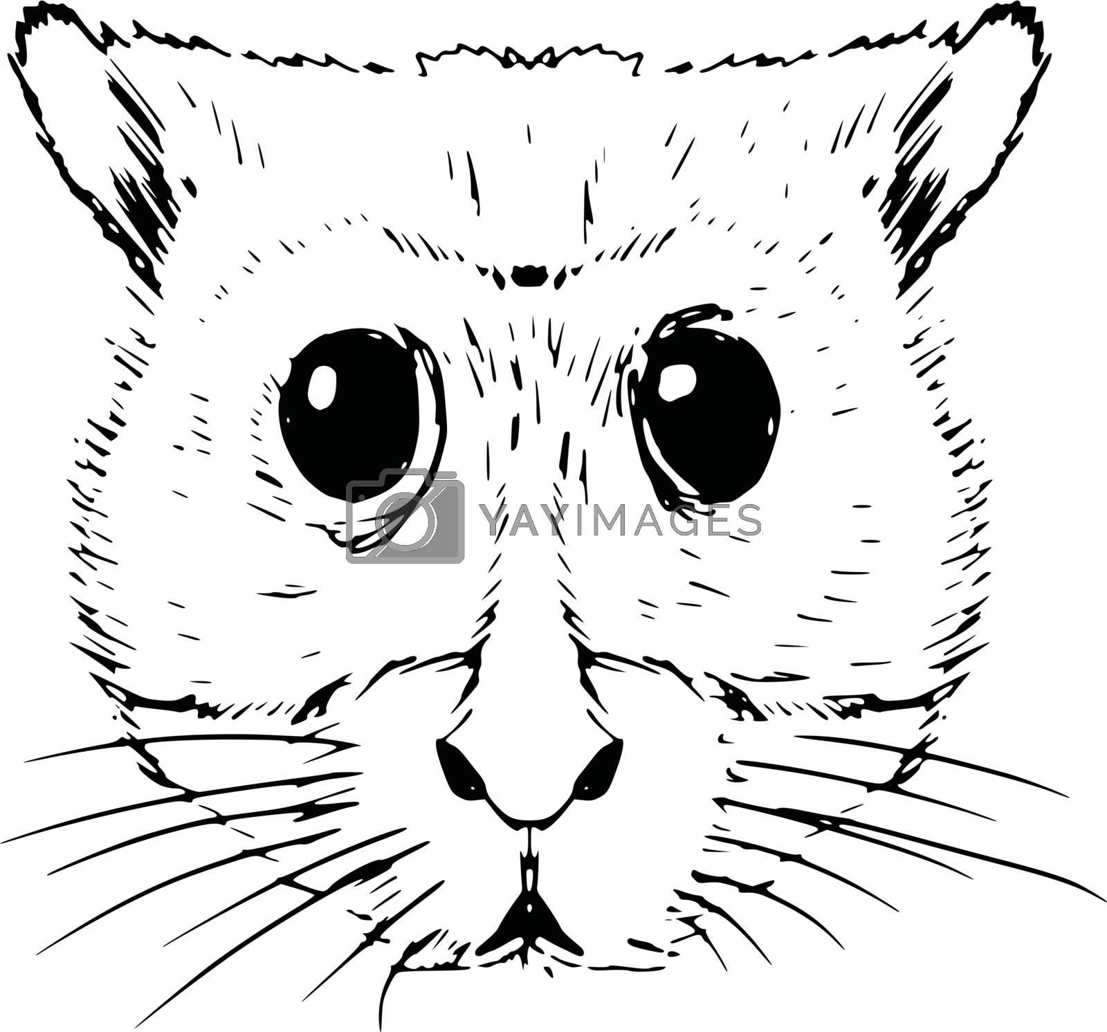 hand drawn, sketch, cartoon illustration of hamster