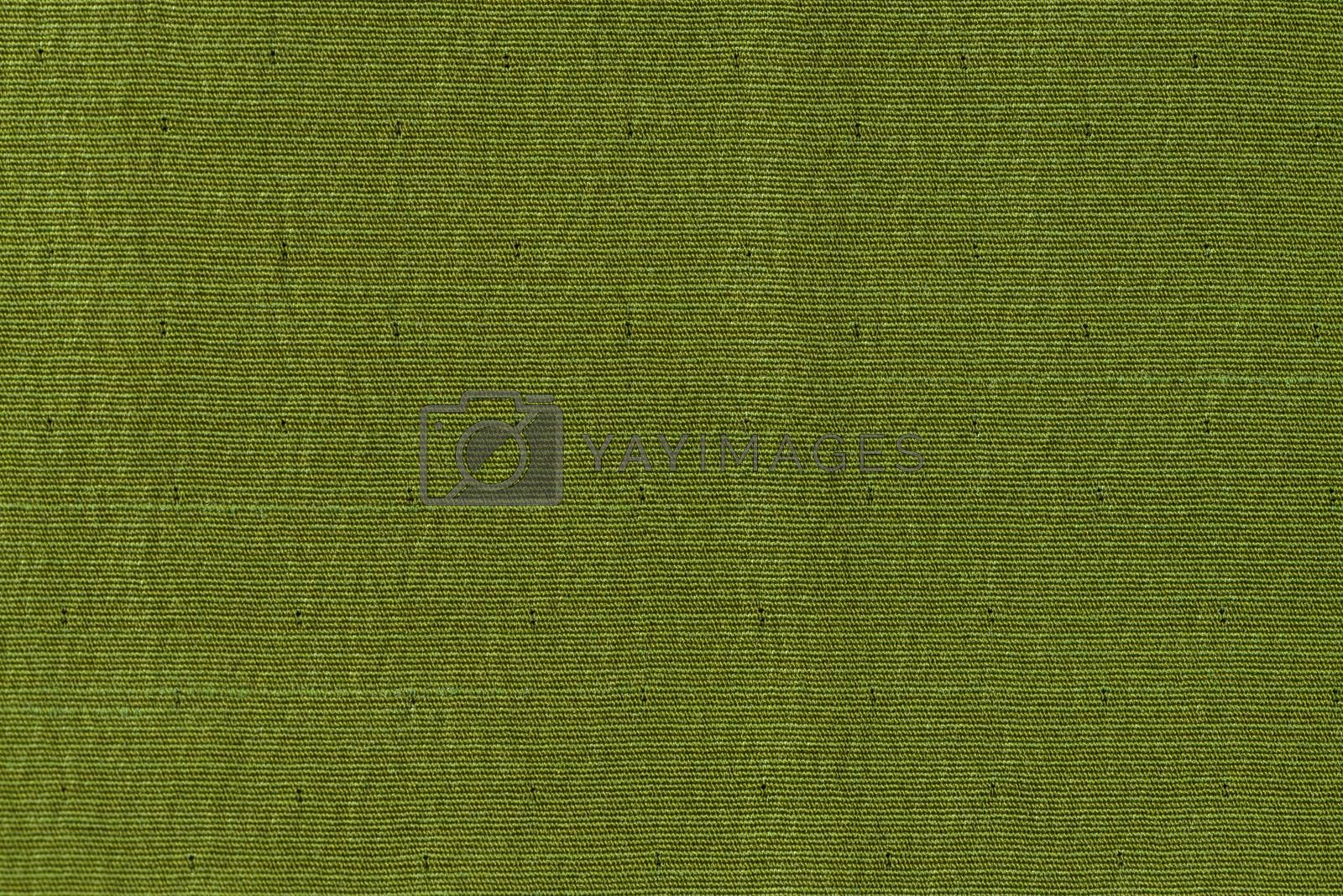 Green fabric texture by homydesign
