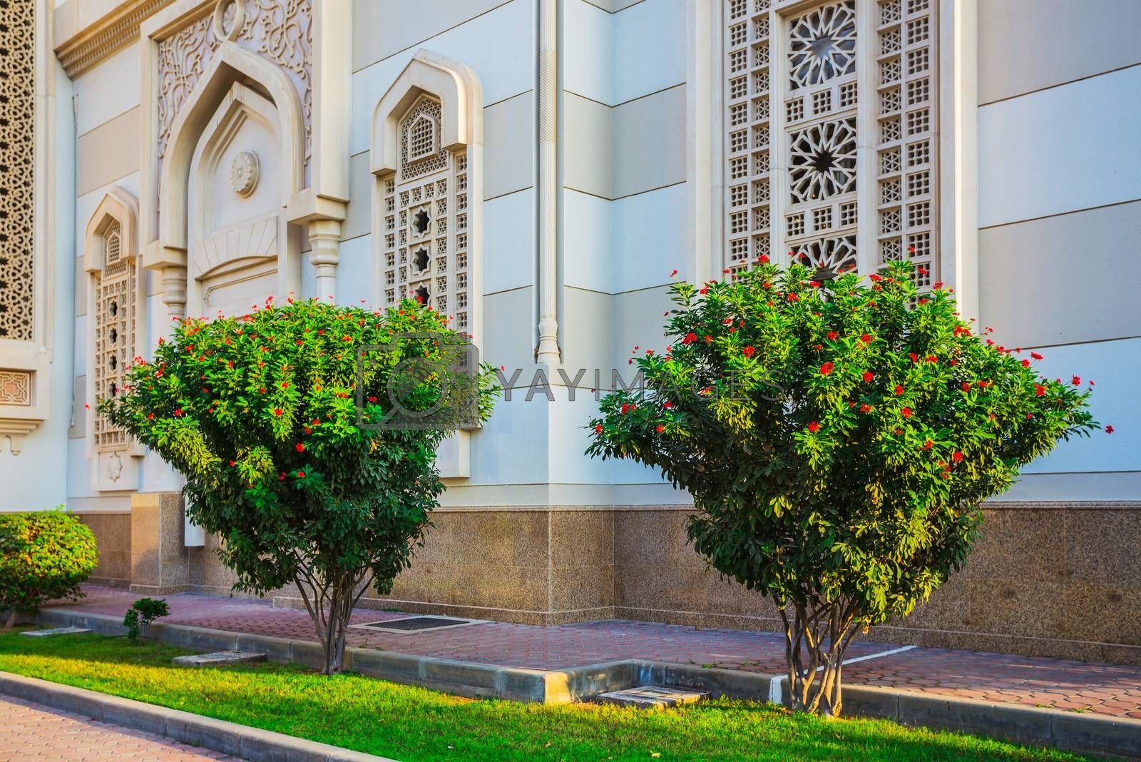 Trees on the background of a mosque in Sharjah, UAE
