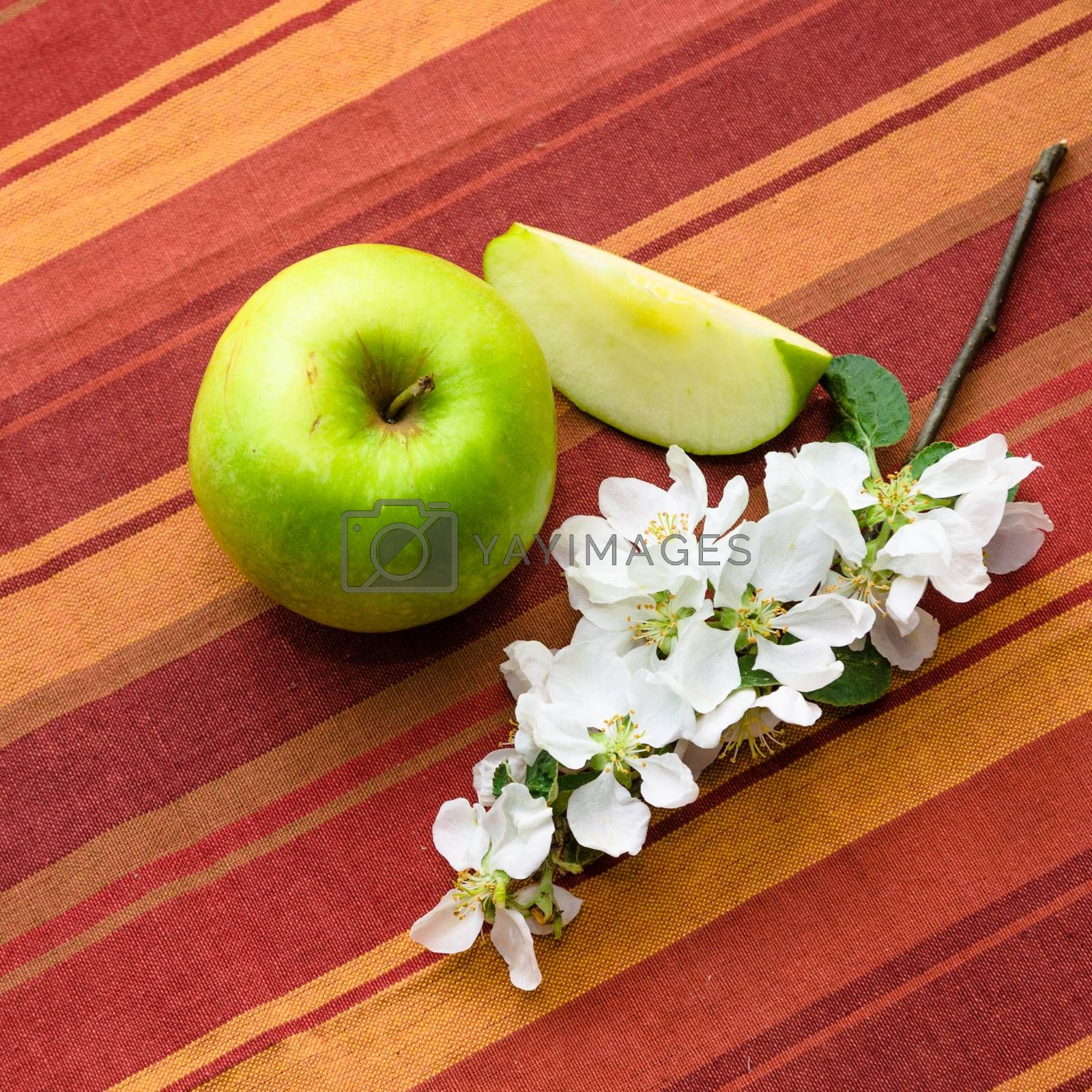 Green apple with a branch close-up
