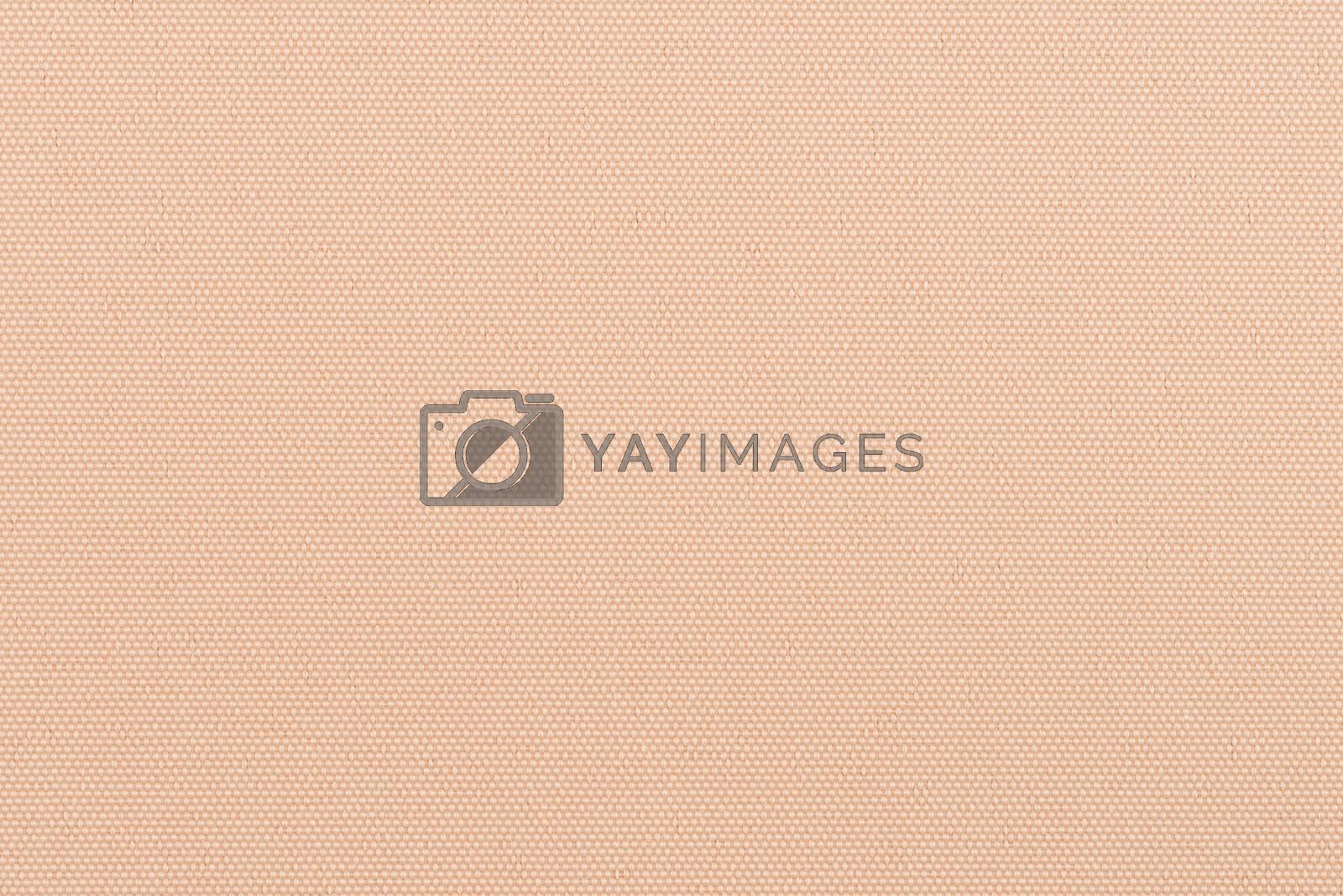 Royalty free image of Orange vinyl texture by homydesign