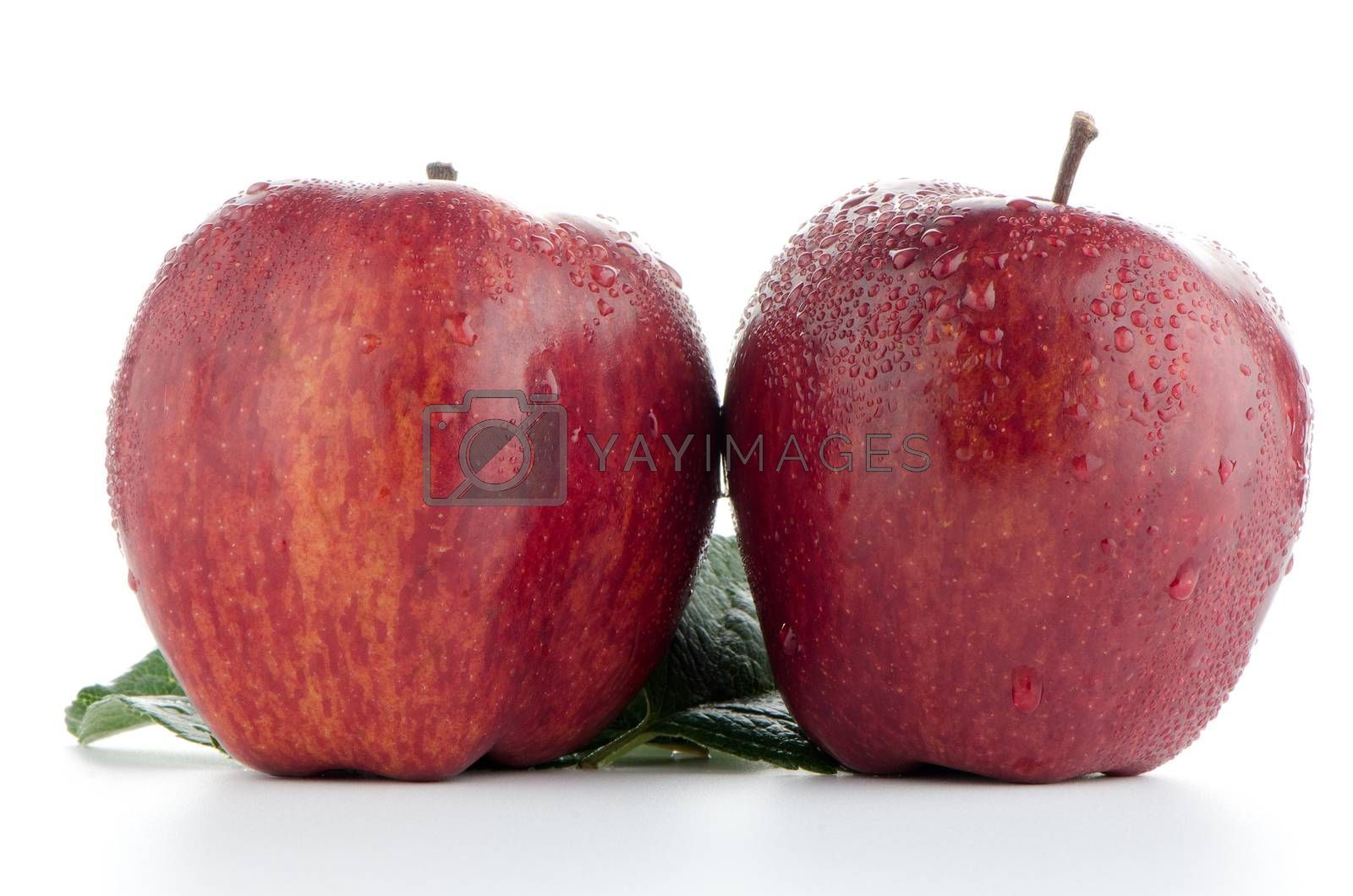 Royalty free image of Ripe red apples by homydesign
