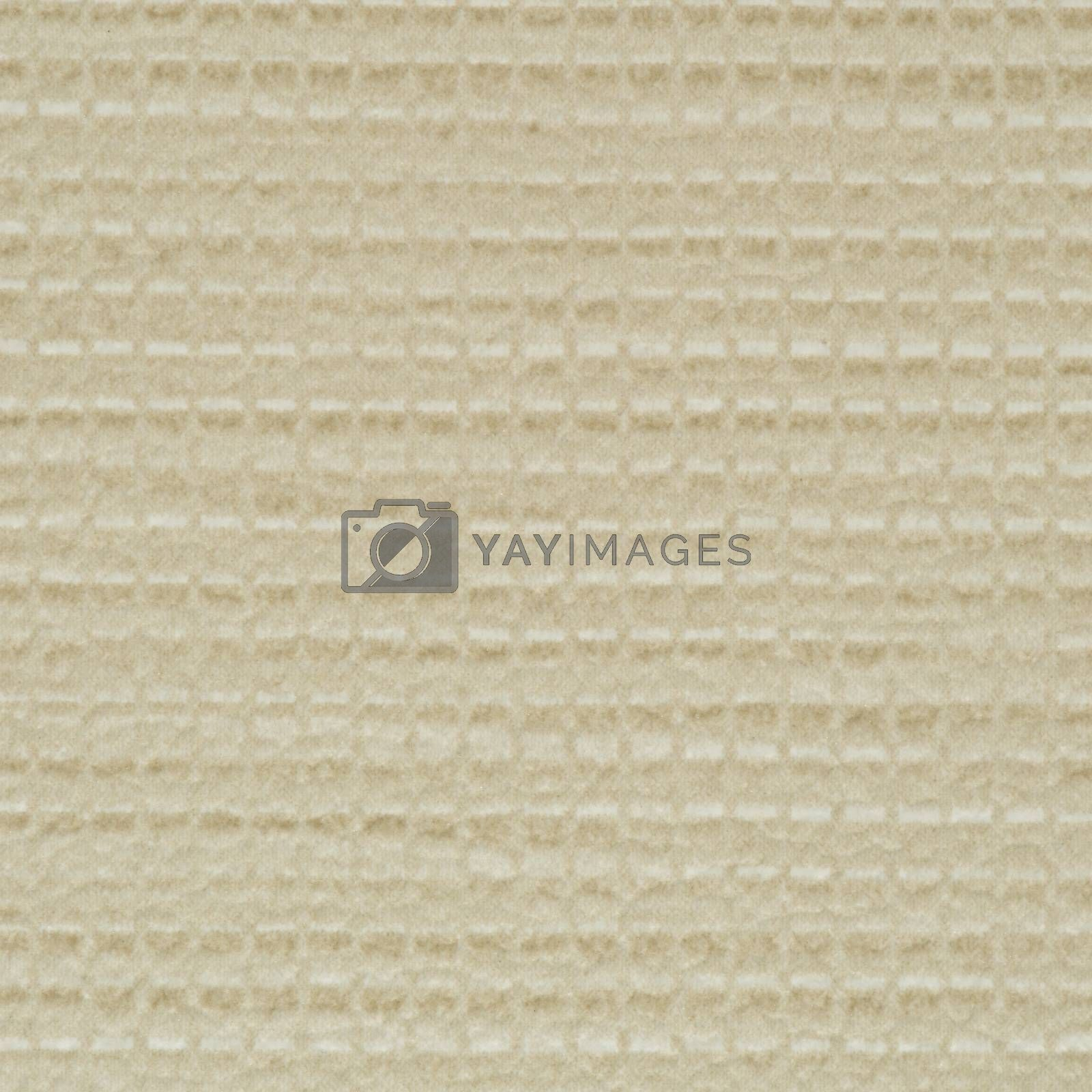 Royalty free image of Green vinyl texture by homydesign