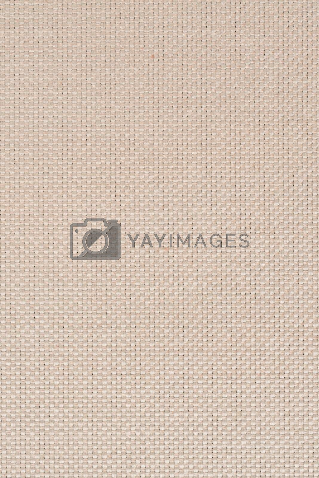 Royalty free image of Beige vinyl texture by homydesign