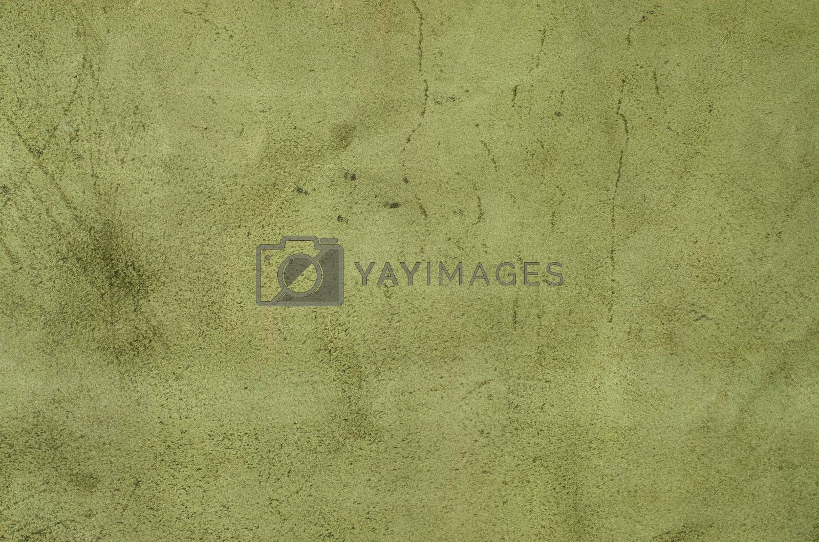 Royalty free image of Green leather by homydesign