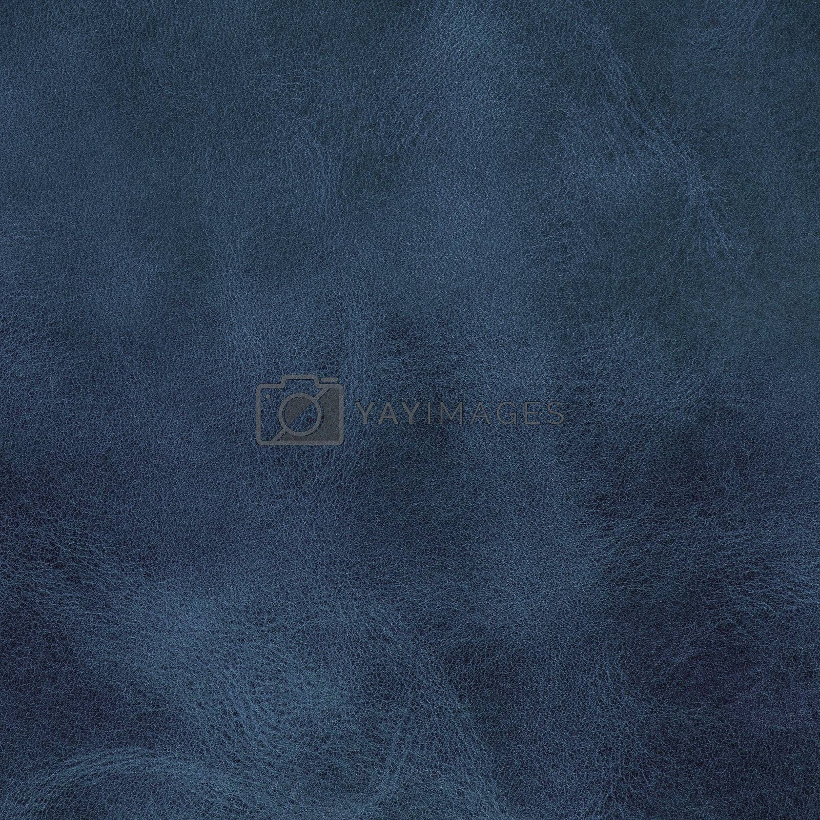 Royalty free image of Blue leather texture by homydesign