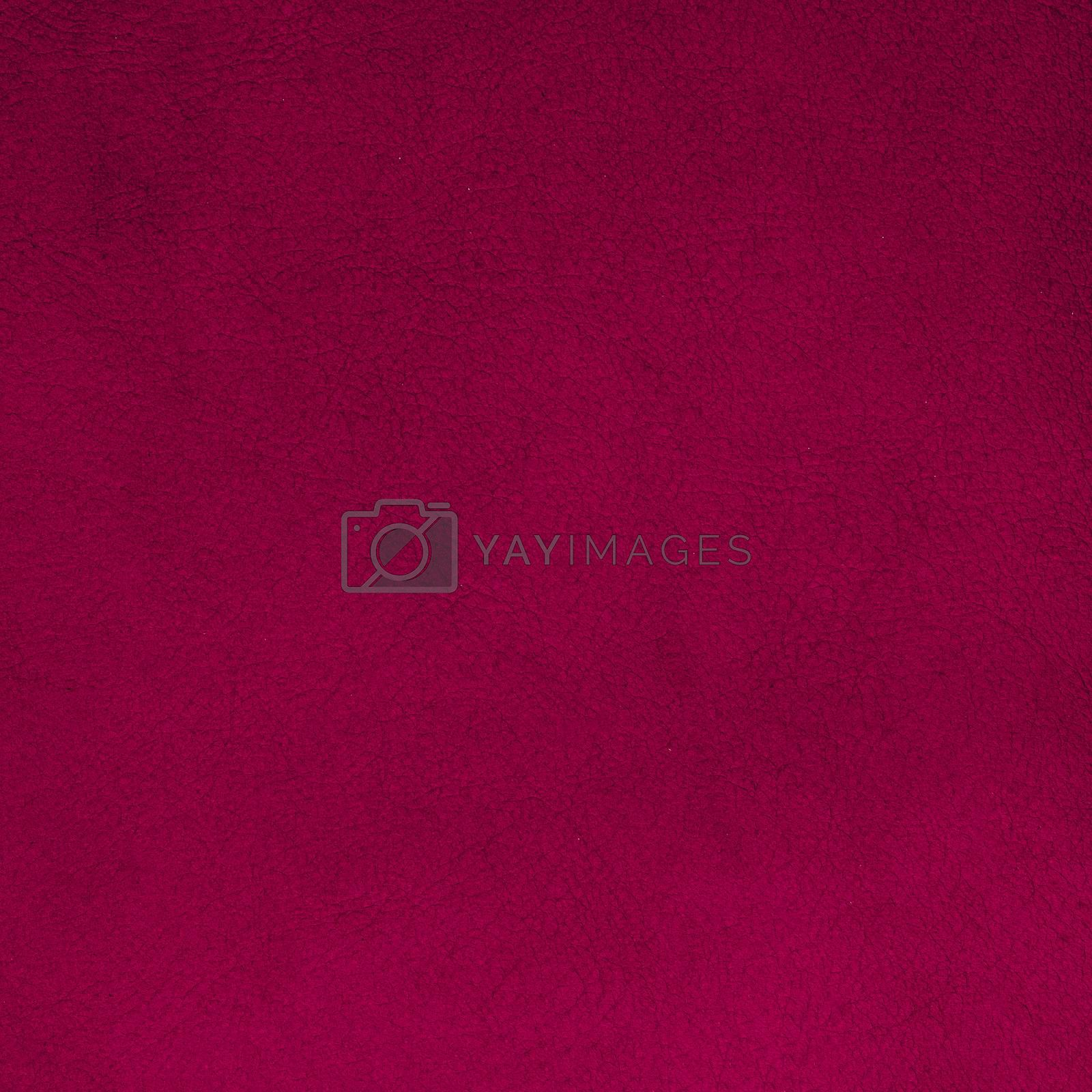 Royalty free image of Pink leather  by homydesign