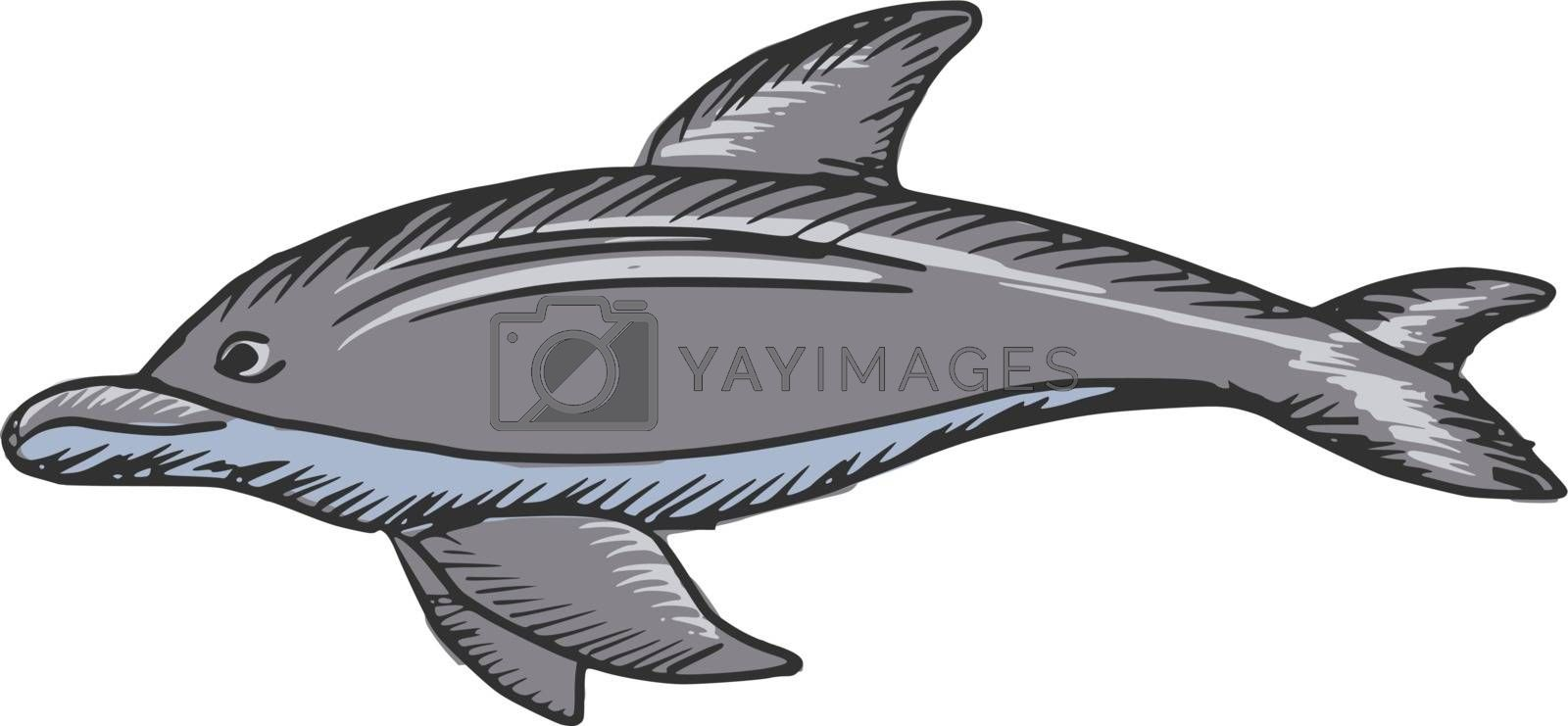 hand drawn, sketch, cartoon illustration of dolphin