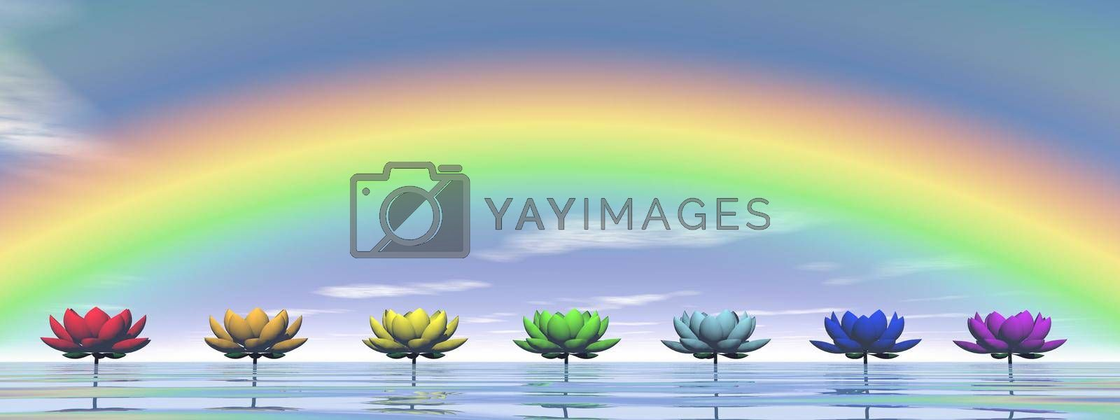 Colorful lily flowers for chakras upon water by day with rainbow