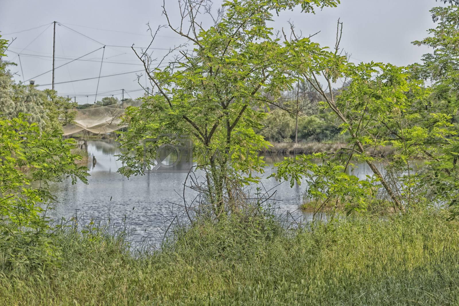 Fishing huts on the Pialassa della Baiona brackish lagoon near Marina Romea along the  Adriatic seaside in Ravenna (Italy)