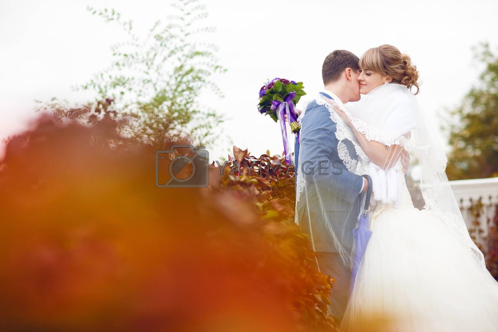 tenderness of the bride and groom