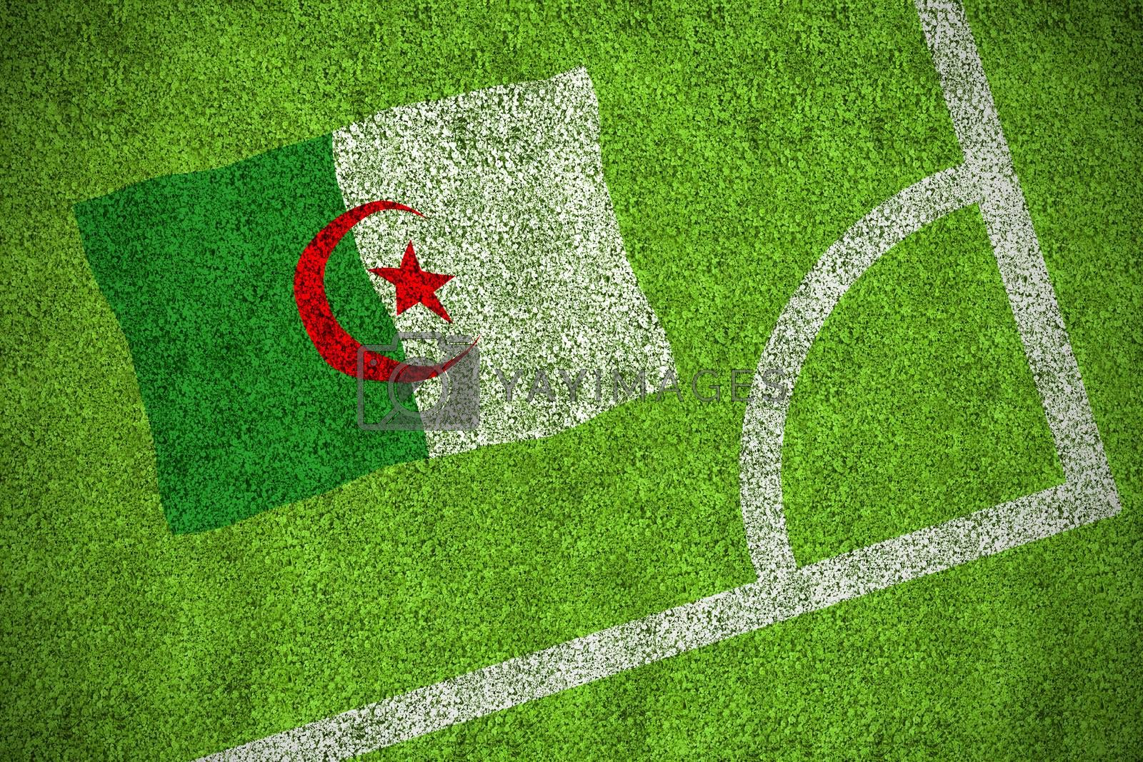 Algeria national flag by Wavebreakmedia