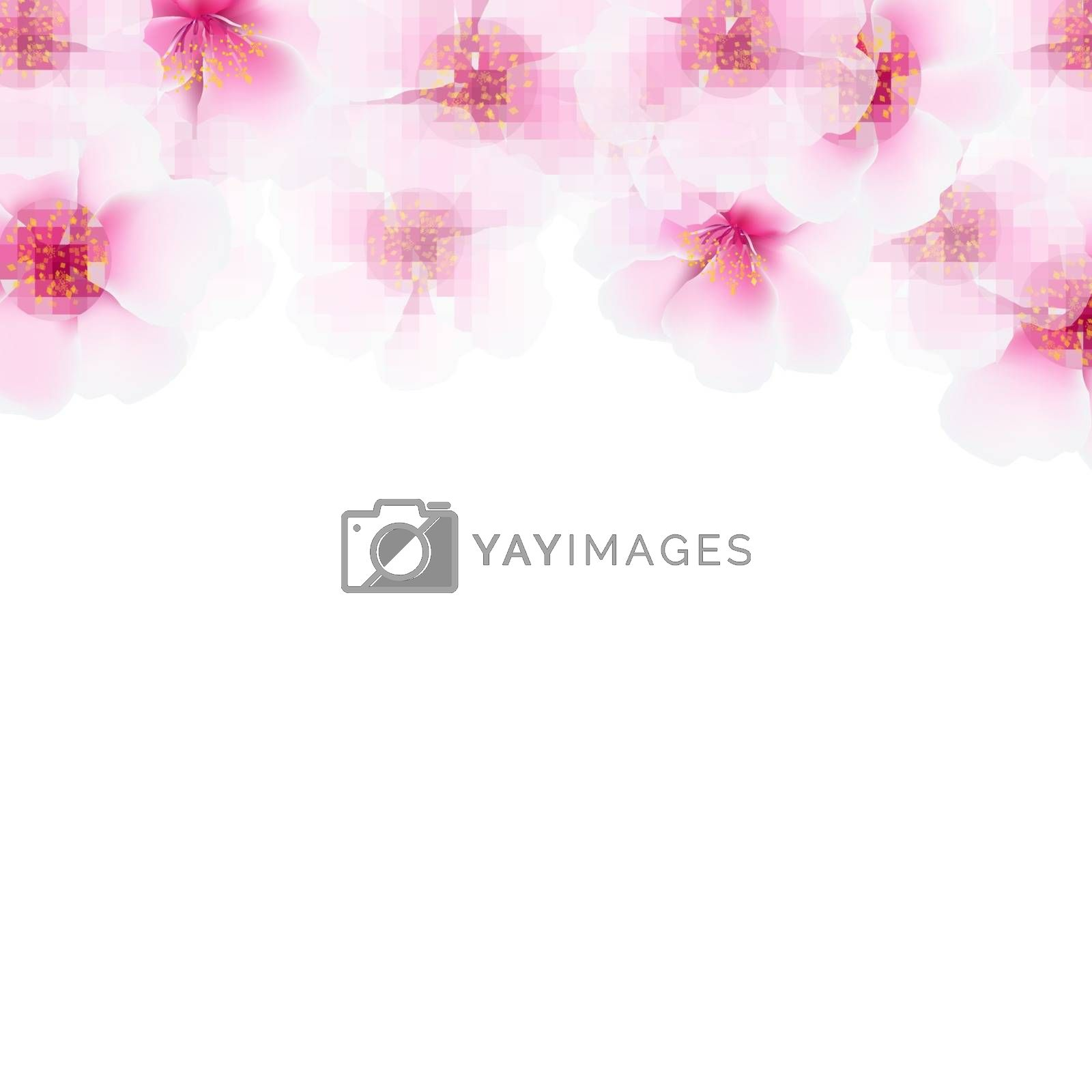 Pink Cherry Flower Border by barbaliss