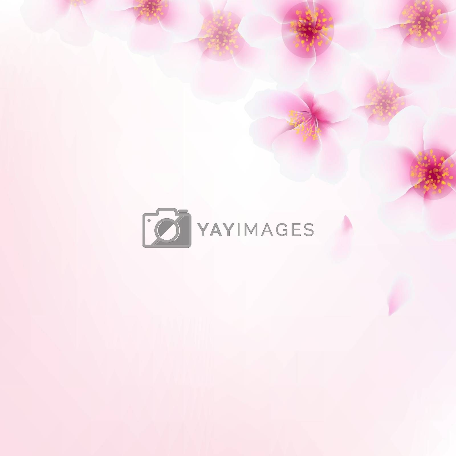 Pink Cherry Flower Border With Bokeh by barbaliss