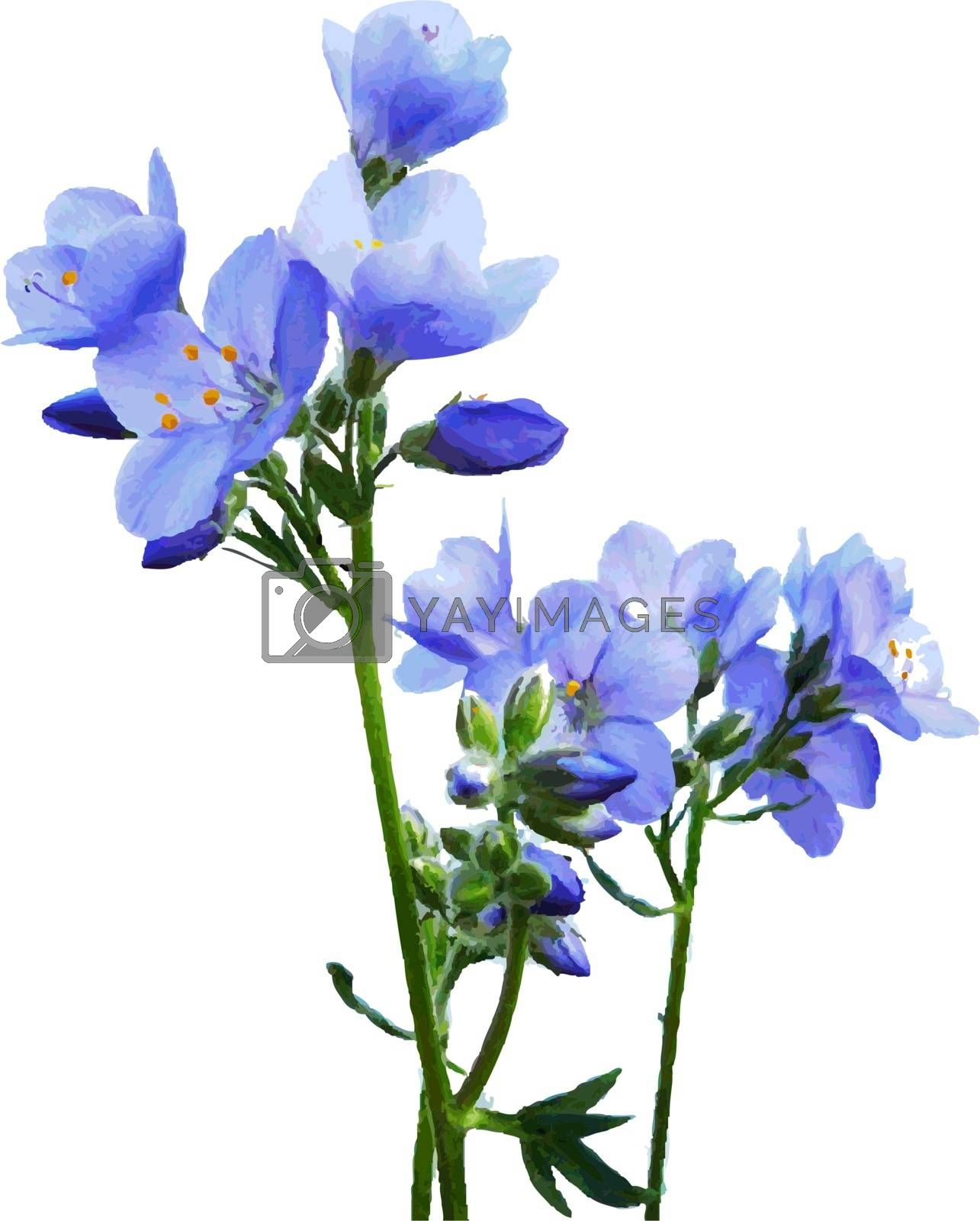 Blue Watercolor Flowers by barbaliss