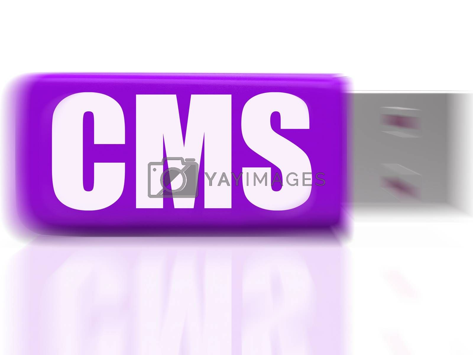 CMS USB drive Means Content Optimization Or Data Traffic by stuartmiles