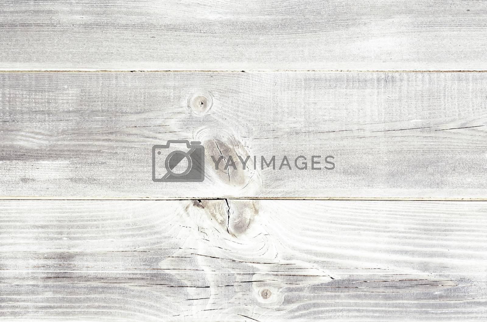 White Wooden Background by razvodovska