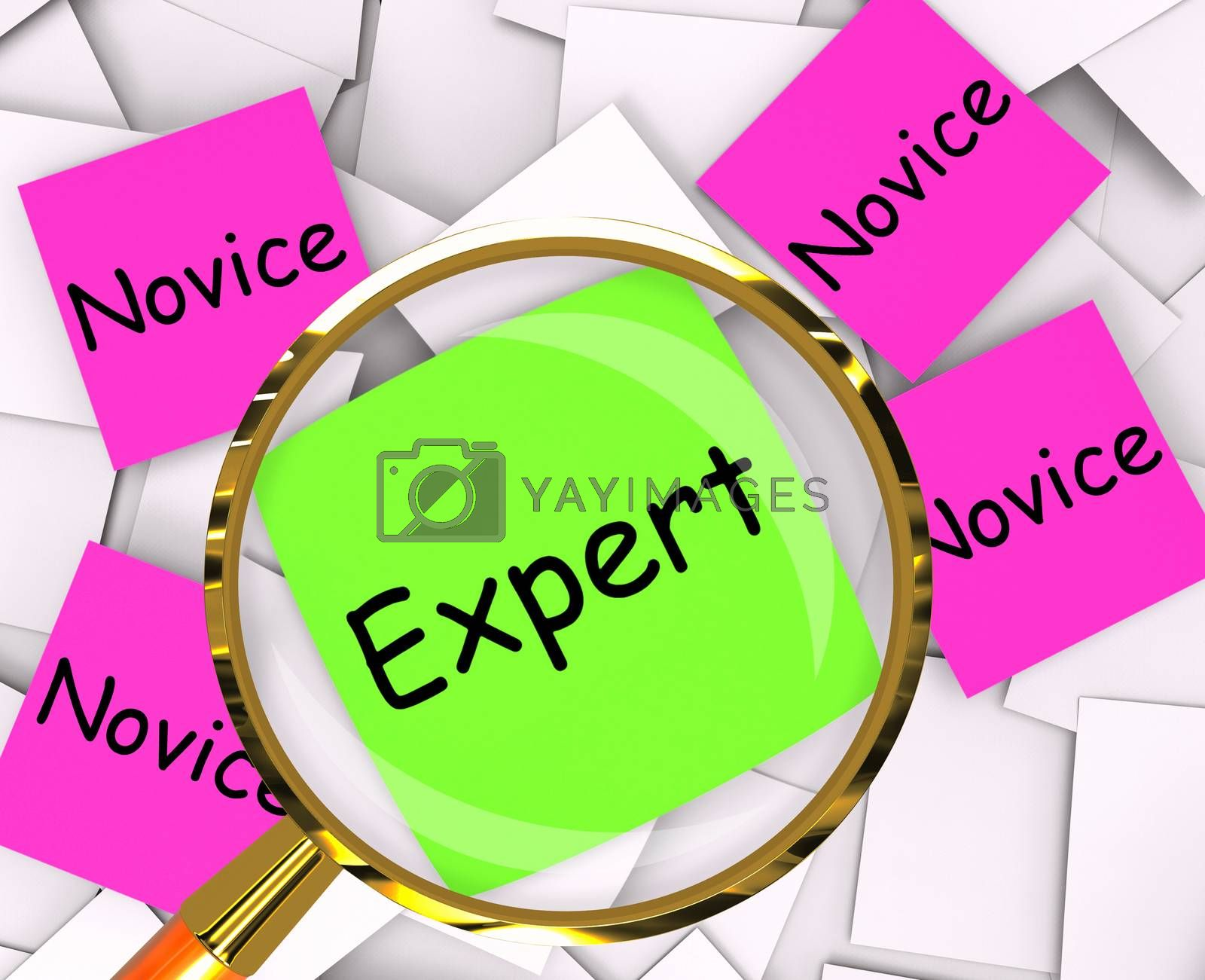 Expert Novice Post-It Papers Mean Experienced Or Inexperienced by stuartmiles